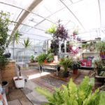 esprit jardin - jardinerie pédagogique